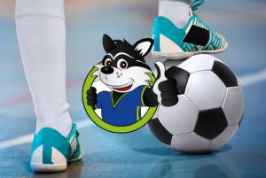 Lees meer over het artikel Sportakkoord: Sportbieb SAM, een nieuw project!!
